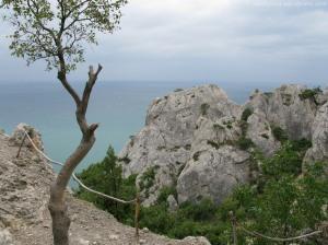 Ще одне дерево та ще більше каміння