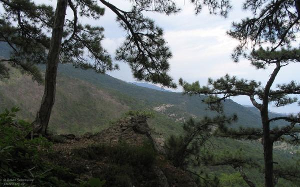 Пташина скеля на Боткінській стежці