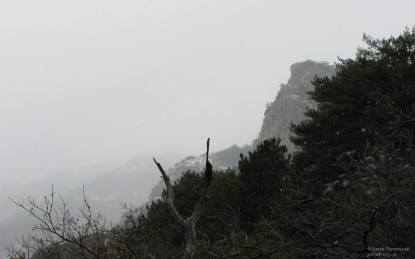 Ставрі-Кая
