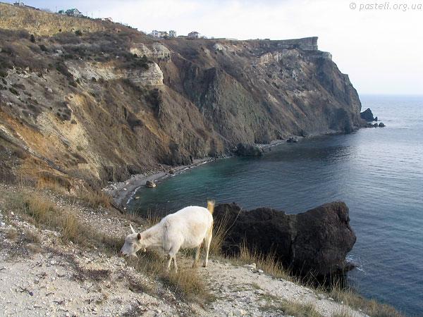 А без кози, то мабуть, був би не Крим :-)